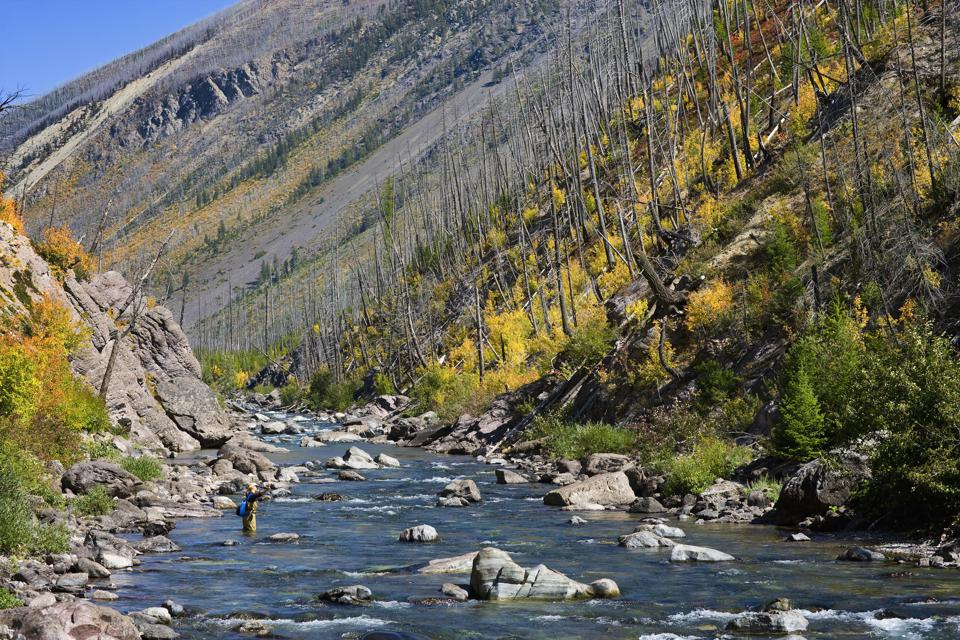 USA, Montana, woman fly fishing in the North Fork of the Blackfoot River