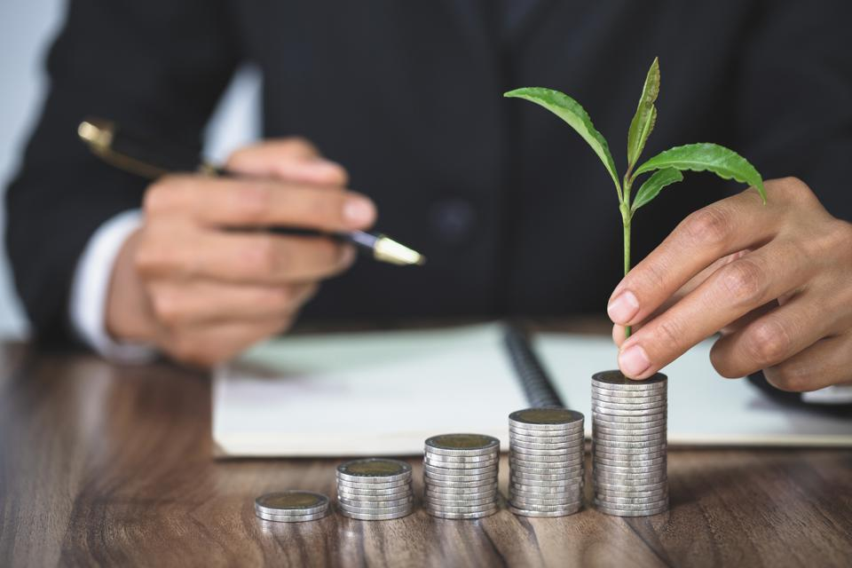 Hand with tree growing from pile of coins, concept for business, innovation, growth and money