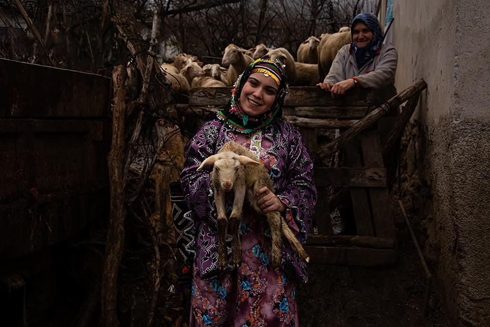 The World We Want, global photo contest, shepherdess with sheep in Turkey.
