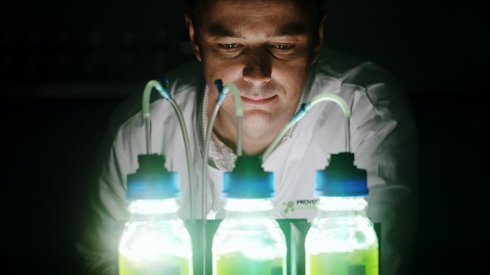 Scientist looks at three bottles containing algae.