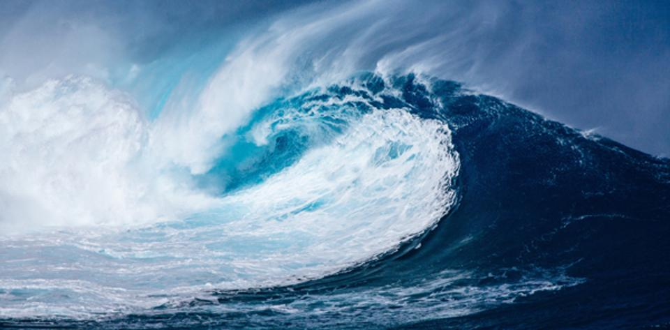 """How We're Positioning Natural Resources for a Potential """"Blue Wave"""""""