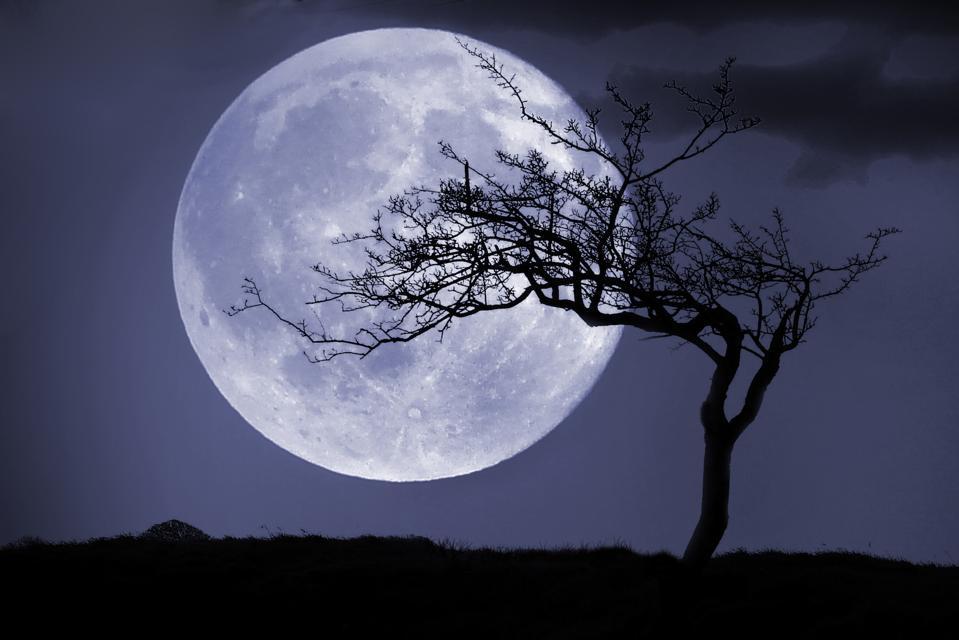 A ″seasonal Blue Moon″ will occur in 2021.