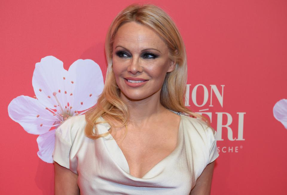 Wine has been described as similar to Pamela Anderson in that it is voluptuous and full-bodied