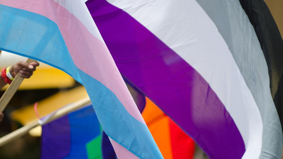 Rainbow, transgender, and asexual flags (purple, white, grey and black) waving in a close-up abstract view during a LGBTQ pride parade