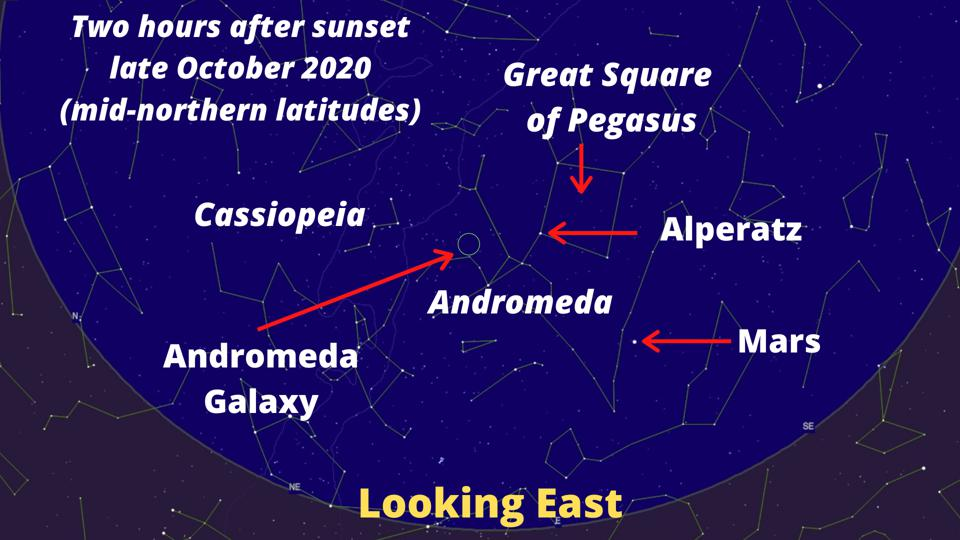 Here's a sky-chart to find the gout location of the Andromeda Galaxy.