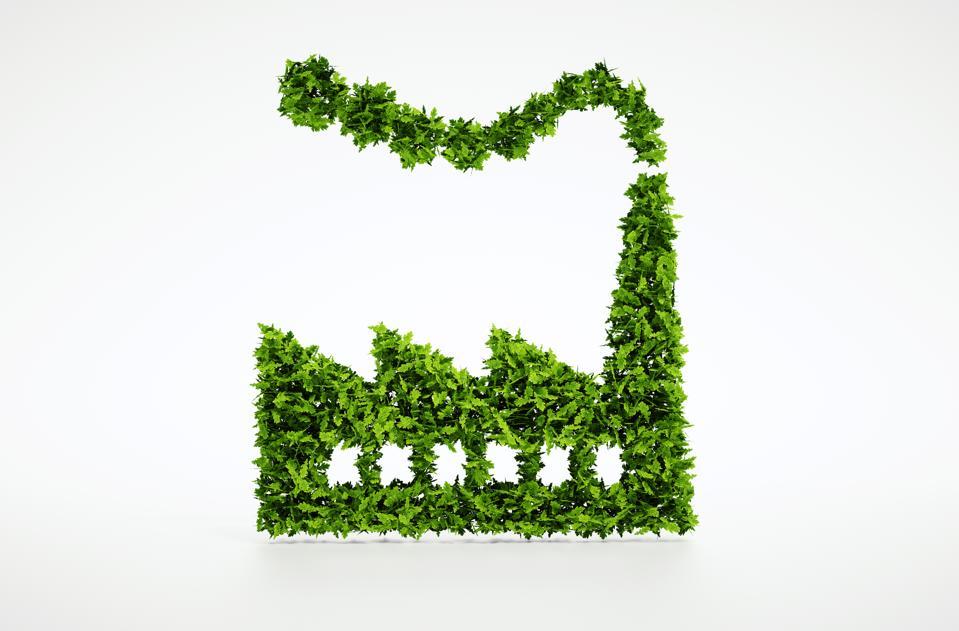 The Regenerative Business
