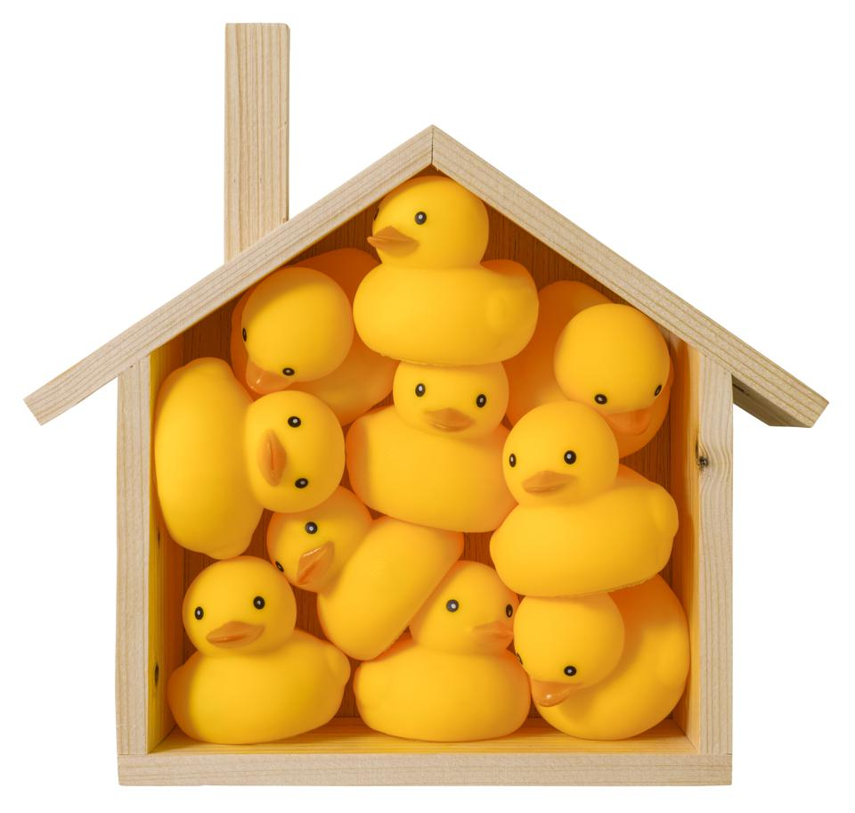 Many yellow rubber ducks squashed inside a conceptual wooden house showing challenge of working in a cramped space.