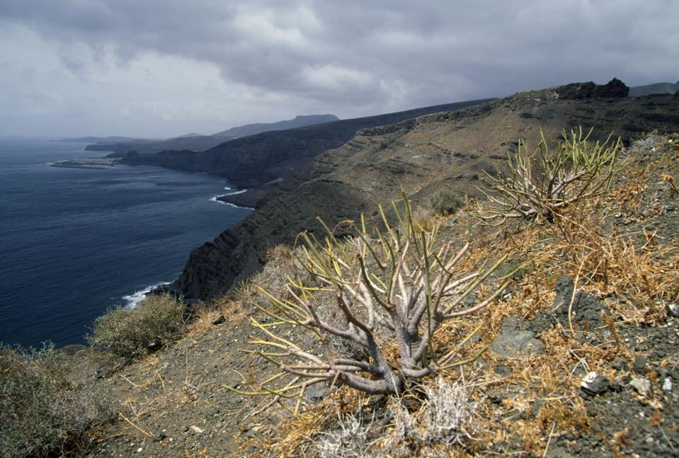 North-east coast of Gran Canaria, Canary islands