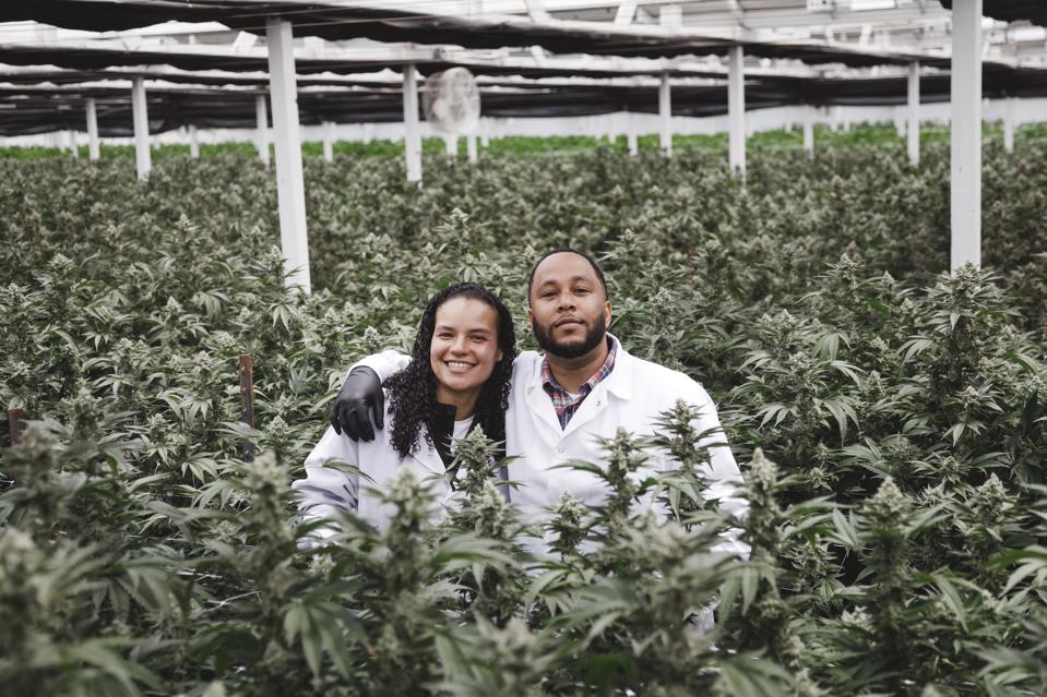 Marie Montmarquet and Allen Hackett, co-founders of MD Numbers, in their Northern California-based grow facility.
