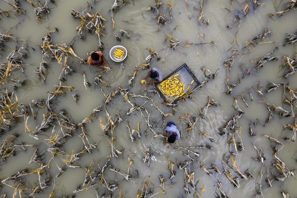 Environmental photo Aerial Photography Awards 2020