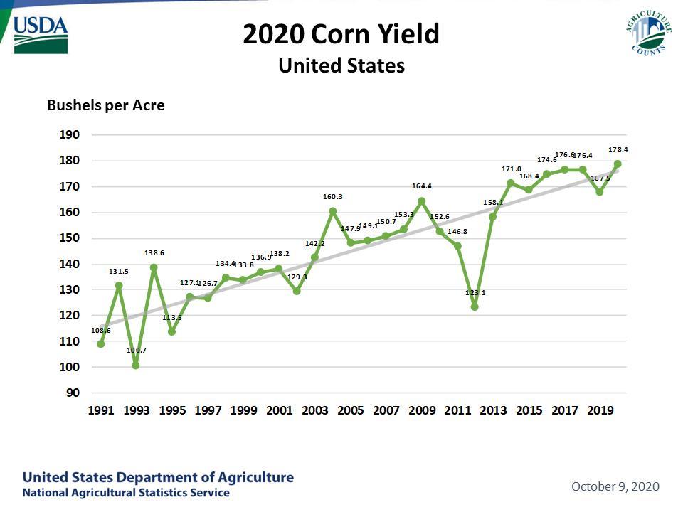 Year-by-year corn yield bushels per acre.