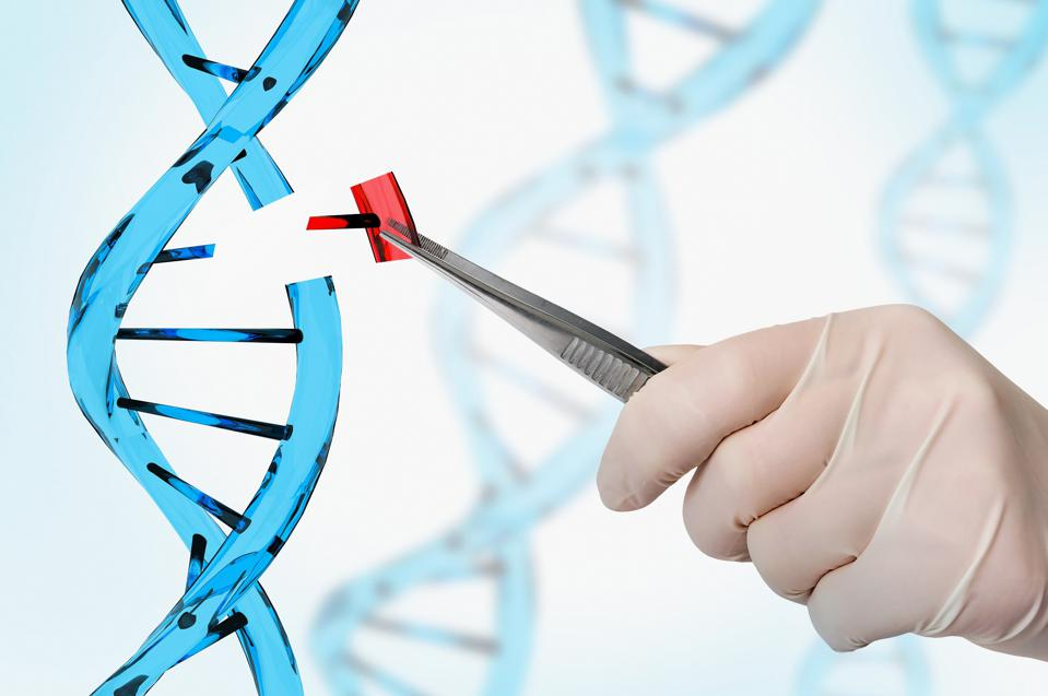 7 Things Everyone Needs To Know About Gene Editing