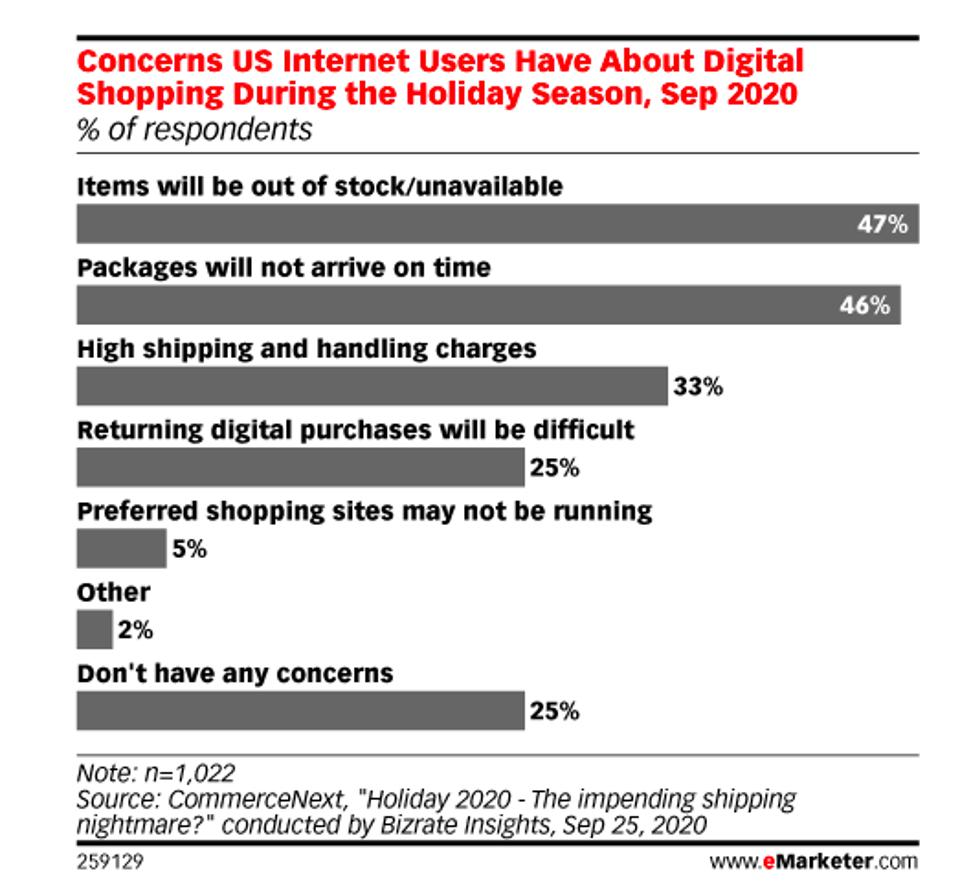 us internet concerns survey for holiday shopping