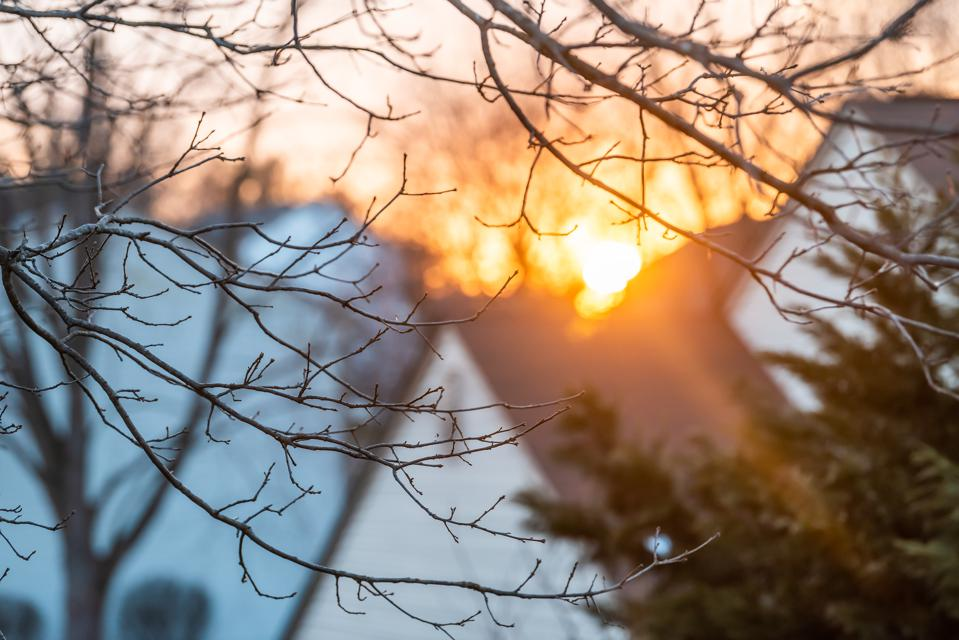 Golden sunlight sunset framing by trees in winter in northern Virginia residential suburban neighborhood with bokeh foreground and closeup of house roof