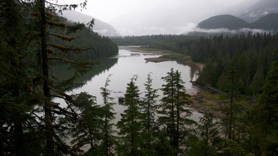A view of Kitlope Lake in the Kitlope Heritage Conservancy.