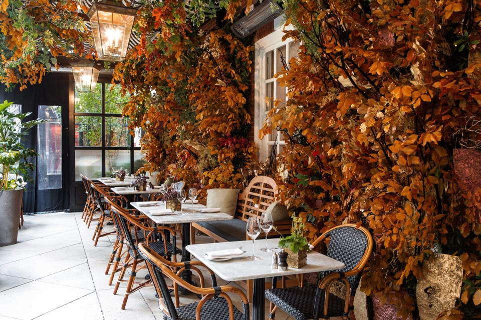 Tables and foliage in a restaurant