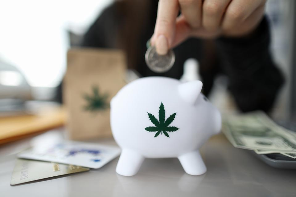 Close-up of person hand putting coin in piggybank with small cannabis symbol on it.