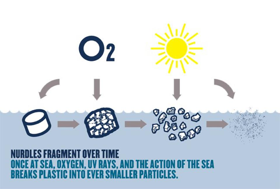 The impact of the sun's UV rays, oxygen and the force of the ocean breaks down plastics to microscopic, almost invisible particles