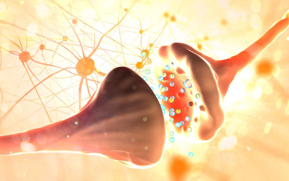 Hormones are impacted with exposure to various chemical and oil spills.  Seen here: Synapse and Neuron cells sending electrical chemical signals.