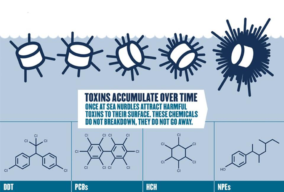 Chemical toxins accumulate over time on microscopic, floating pieces of plastic on the ocean