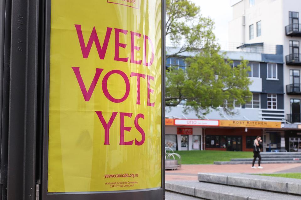 Cannabis Referendum in New Zealand