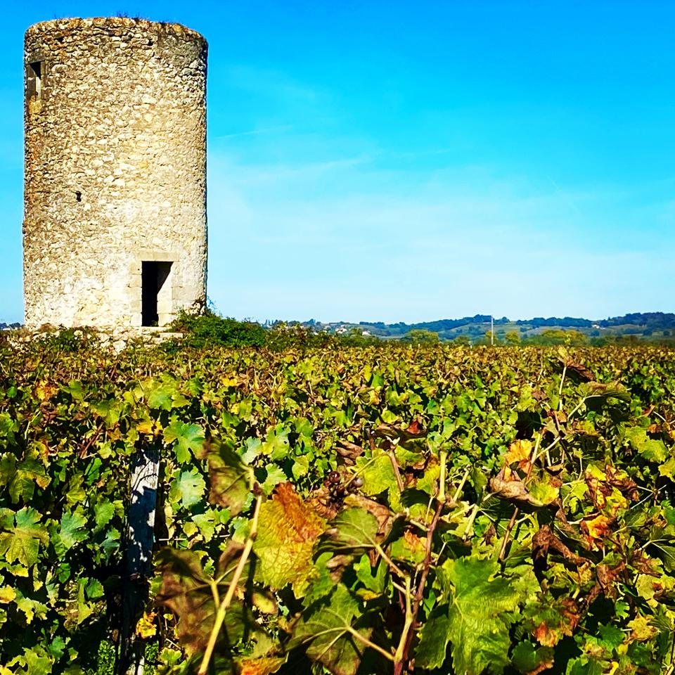 Ancient tower, or 'tour,' in the Graves region of Bordeaux