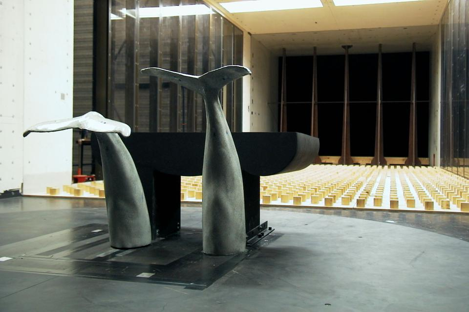 This is believed to be the only whales' tails tested in this Dutch wind tunnel, that is usually used for advanced aviation