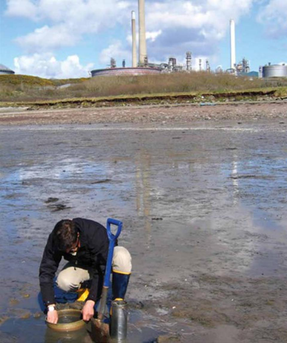 There are clear procedures how to collect and sample oil from a major spill