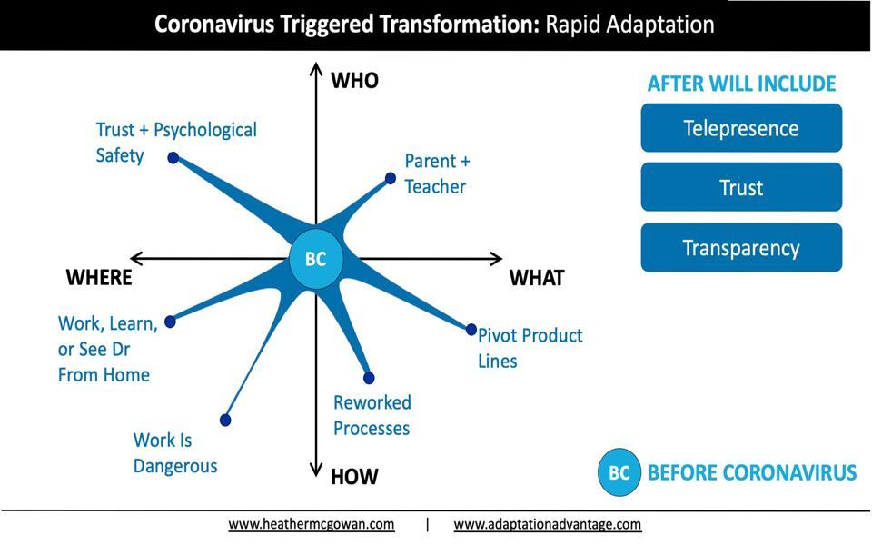 Coronavirus Triggered Transformation: Rapid Adaptation