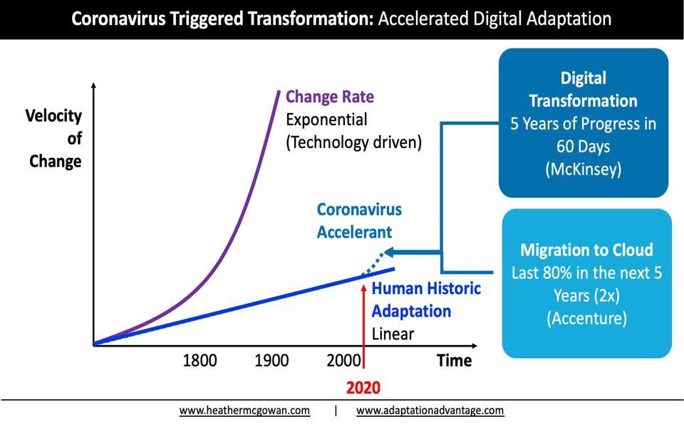 Coronavirus Triggered Transformation: Accelerated Digital Adaptation