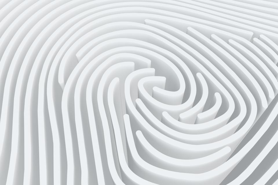3D Fingerprint Maze