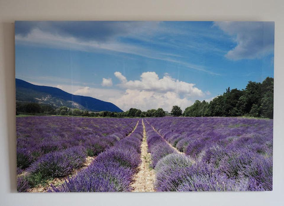 A metal wall art of the lavender fields of Provence