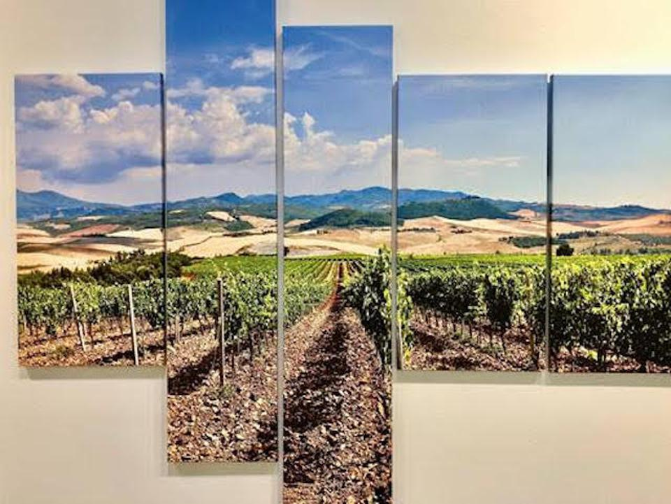 Vineyard in a pentaptych display