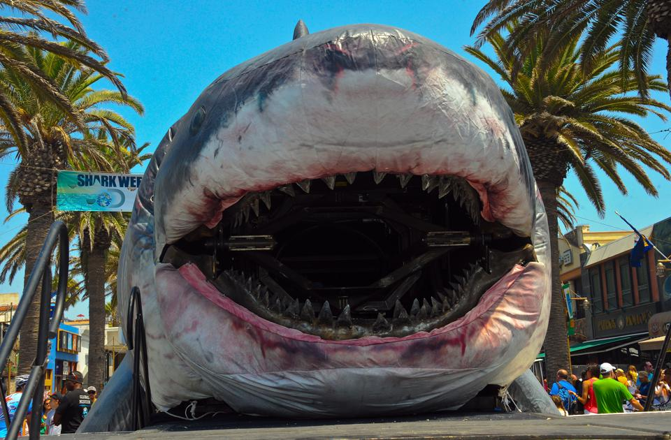 Discovery Channel Hosts 2014 Shark Week Kickoff Party - Day 2