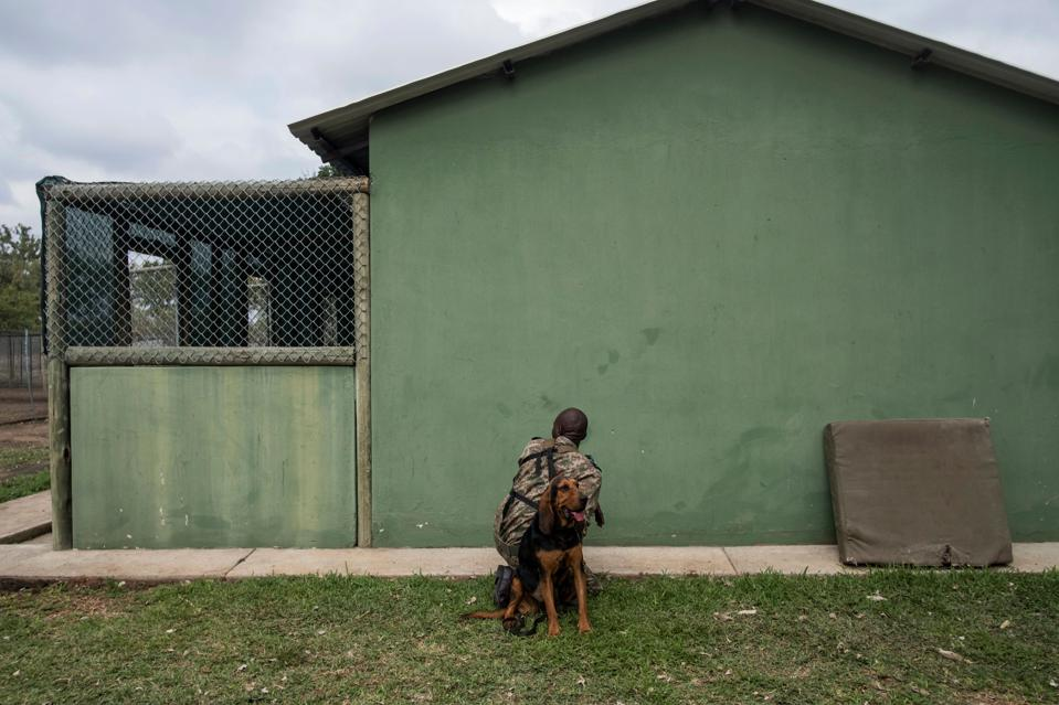 In front of a green building a man in camouflage kneels and a panting dog sits