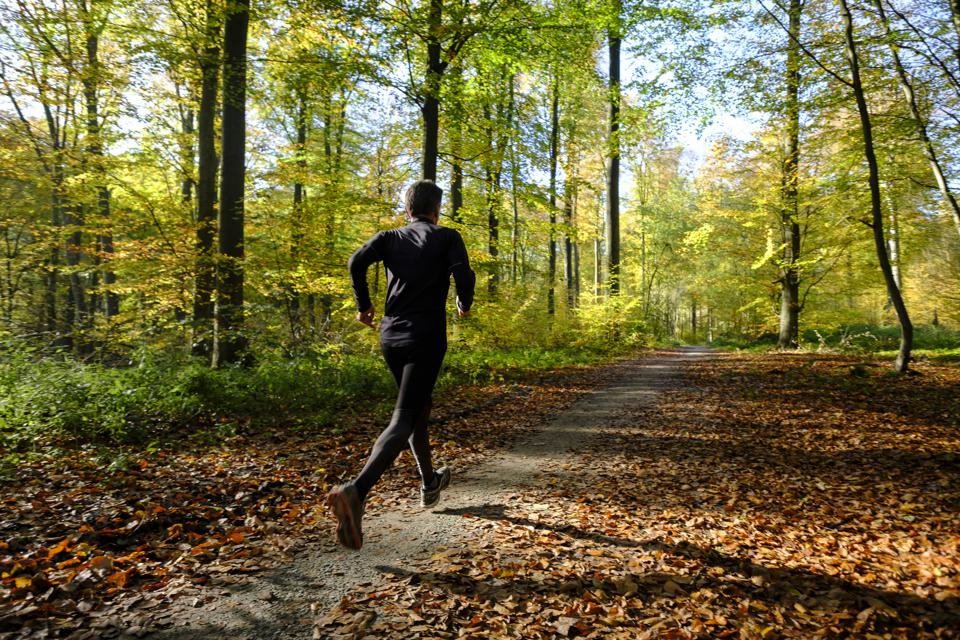 Man jogging through forest on a trail.