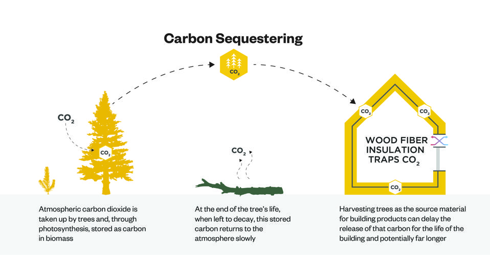 Leveraging wood fiber insulation to address today's climate concerns by sequestering carbon.