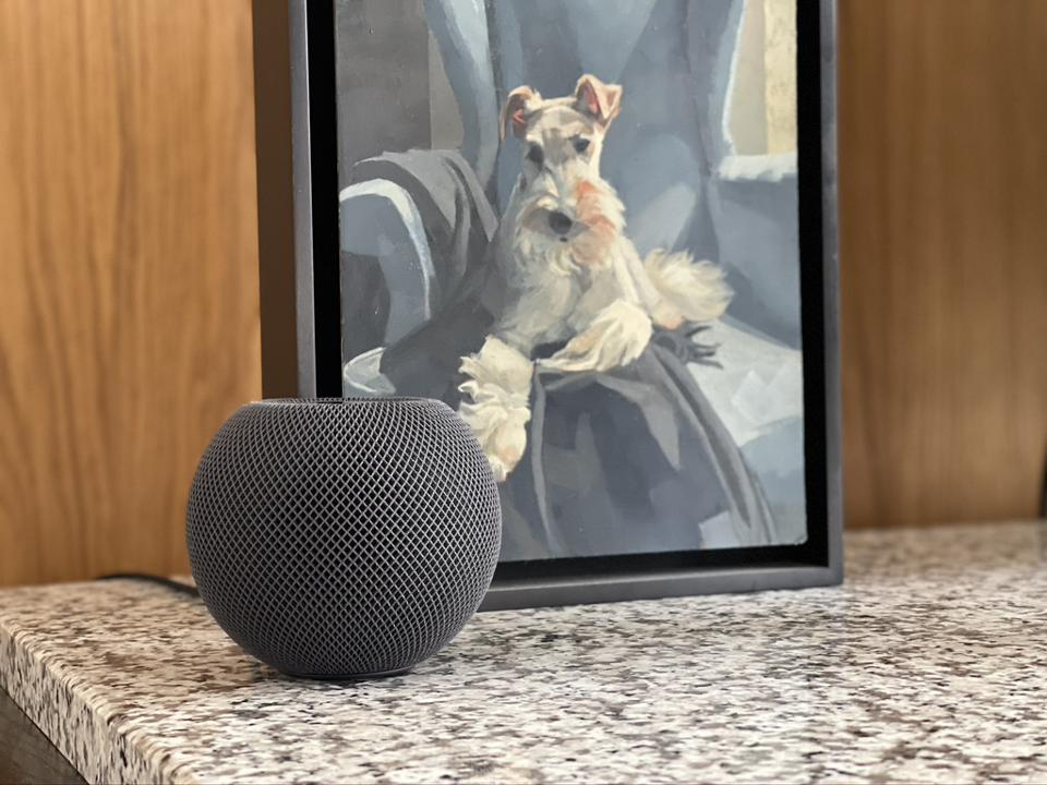 Apple HomePod mini.