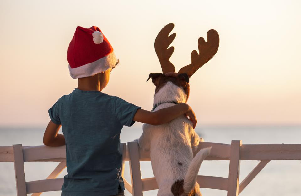 Christmas on a beach concept with boy wearing Santa Clause hat and dog with reindeer