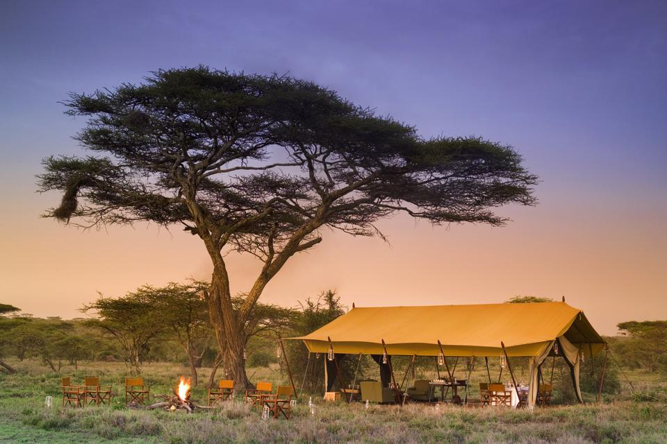 Serengeti Under Canvas andBeyond Black Friday cyber Monday Travel Tuesday deals