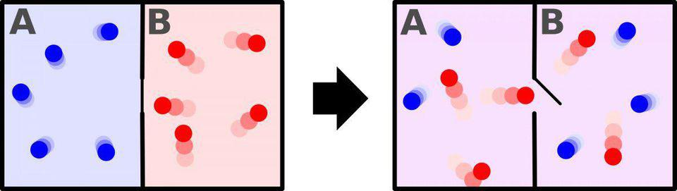 Entropy increases when a divider separating two different-temperature gases is removed.