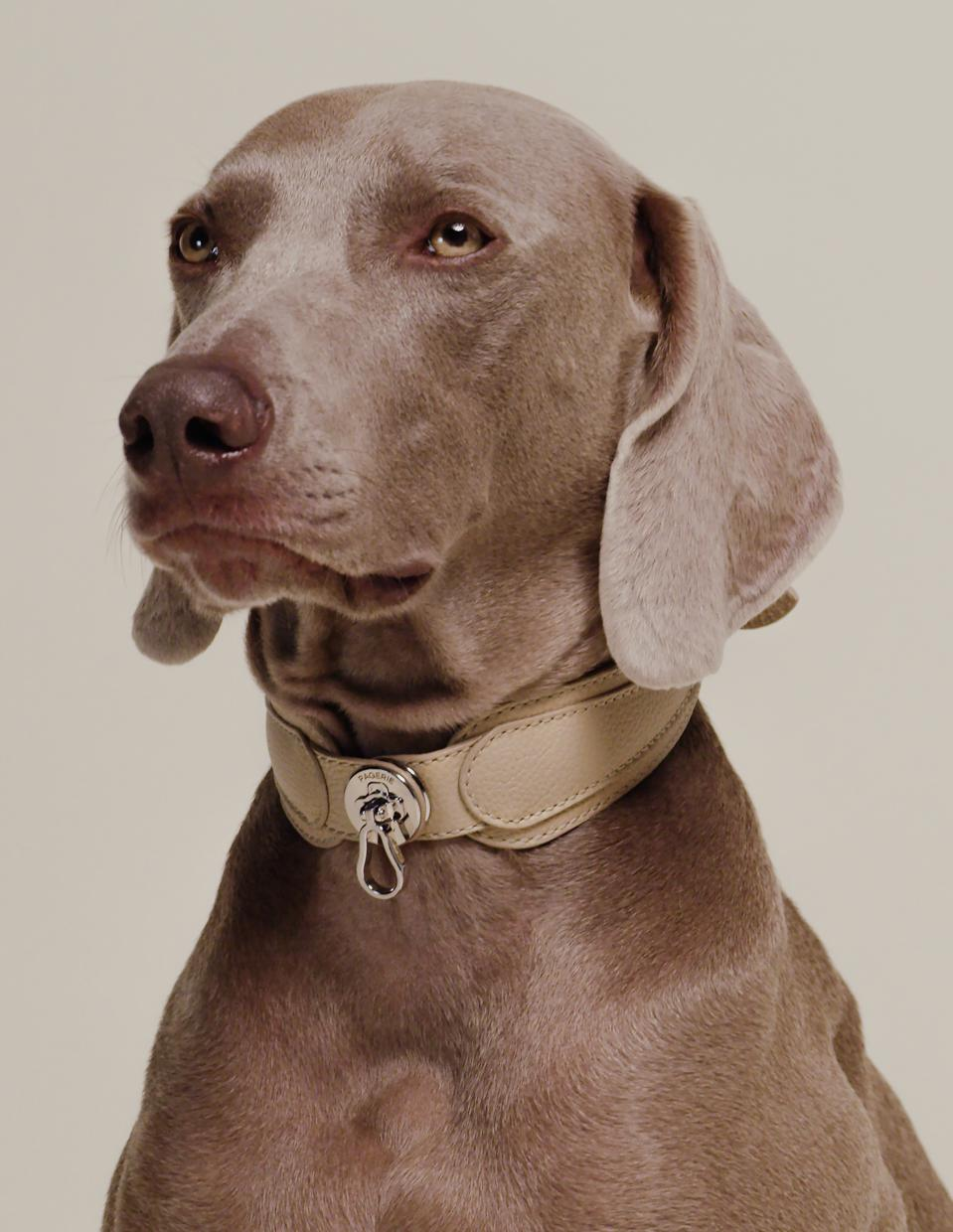 The Dorro collar by PAGERIE