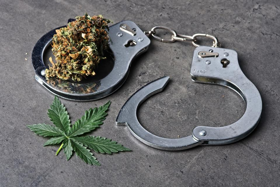 Cannabis bud and leaf with handcuffs