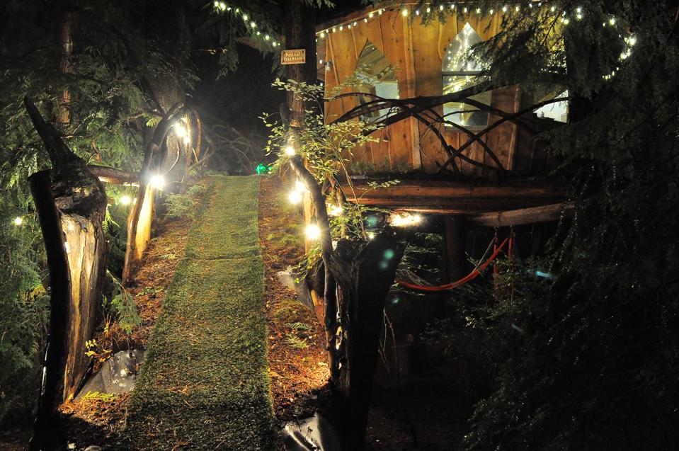 The Pot Leaf Treehouse shines at night.