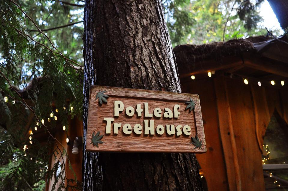 The Pot Leaf Treehouse details.