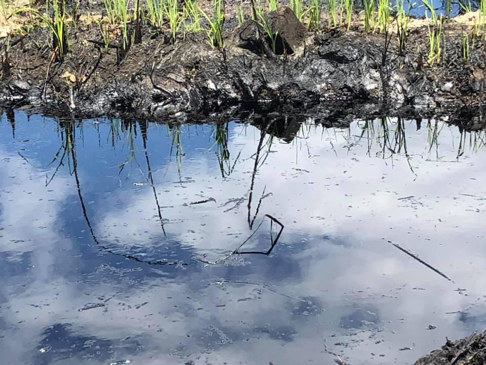 12 Nov 2020: A river of oil appeared around the leaking pipeline that had been ongoing for several days