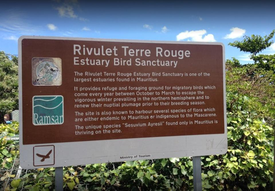 Ramsar protected Terre Rouge is an important bird sanctuary for migratory and local birds, containing many unique bird species only found in Mauritius