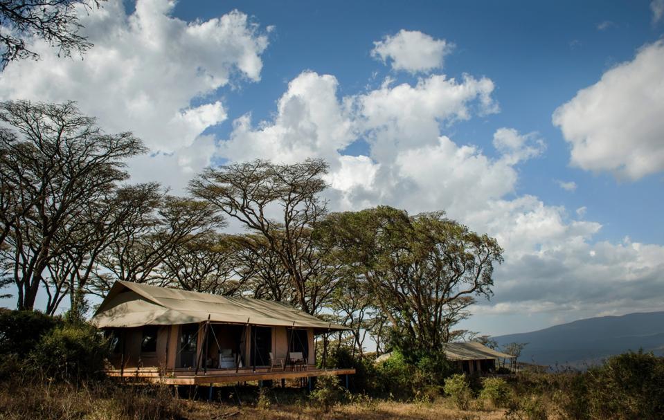 Ngorongoro Nomad Tanzania Black Friday cyber Monday Travel Tuesday deals
