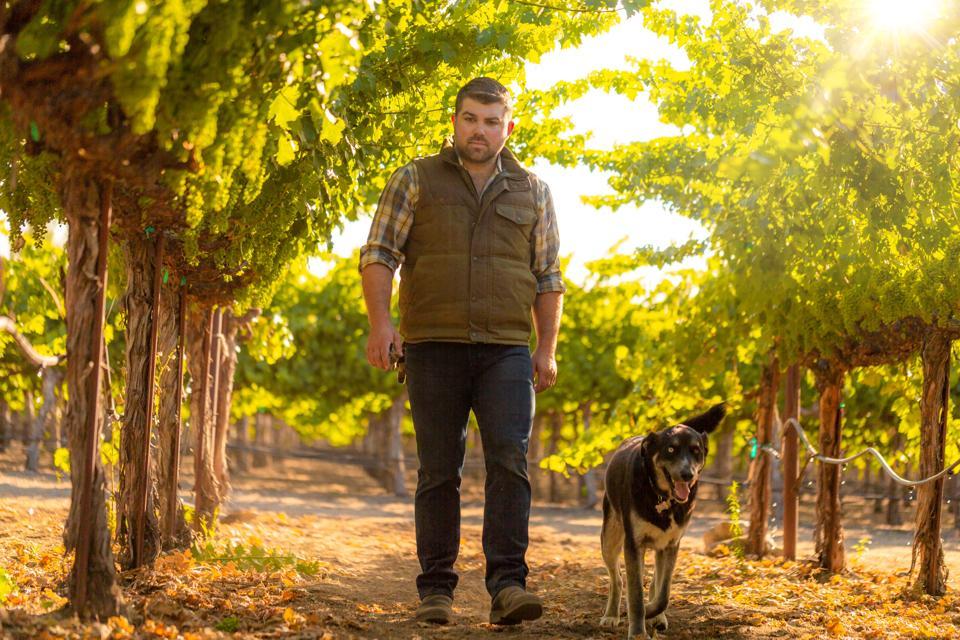Joseph Wagner in his Vineyards