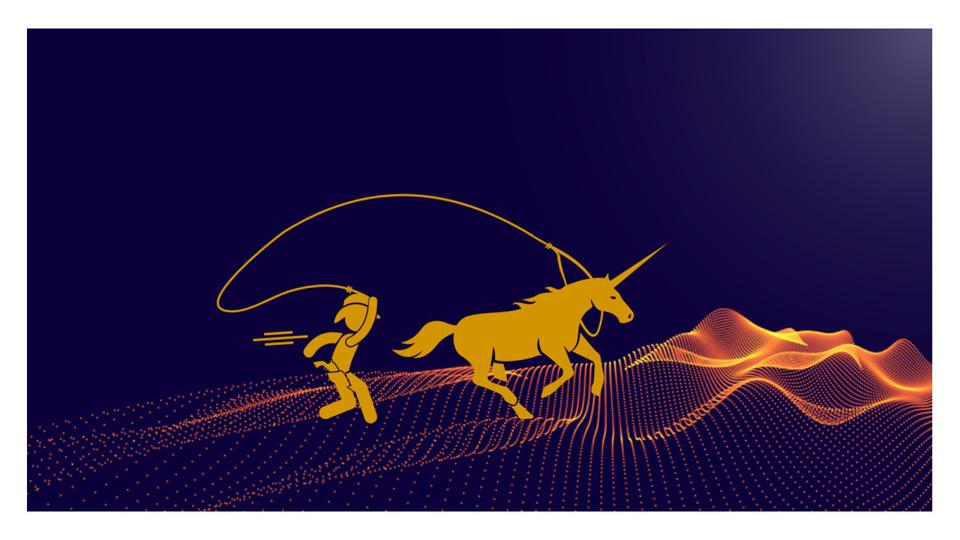 Cowboy chasing unicorn.